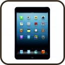Púzdra pre iPad